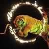 Цирки в Каспийском